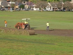 Sports Field Renovations in Queens Park