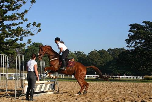 Centennial Parklands Equestrian Centre - Centennial Parklands