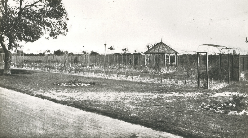 State Library of NSW, Rose Garden, Centennial Park 1914