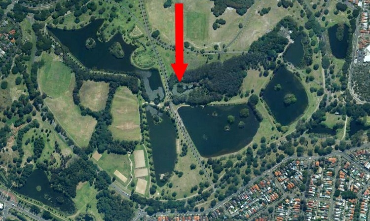 Location of Lily Pond in Centennial Park