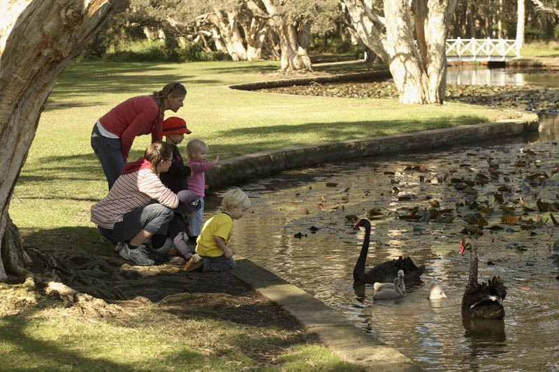 Family visiting Lily Pond to see wildlife