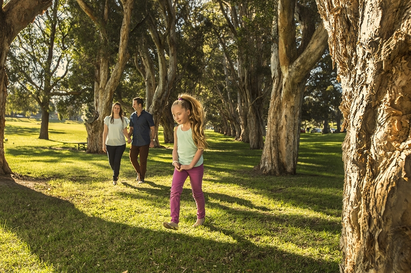 Family enjoying Paperbark Grove, Centennial Park