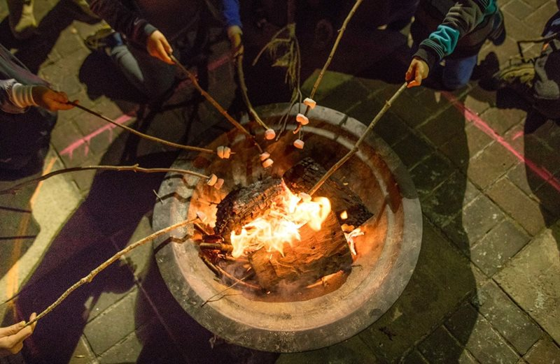 campfire club, centennial park, nature play, nature education